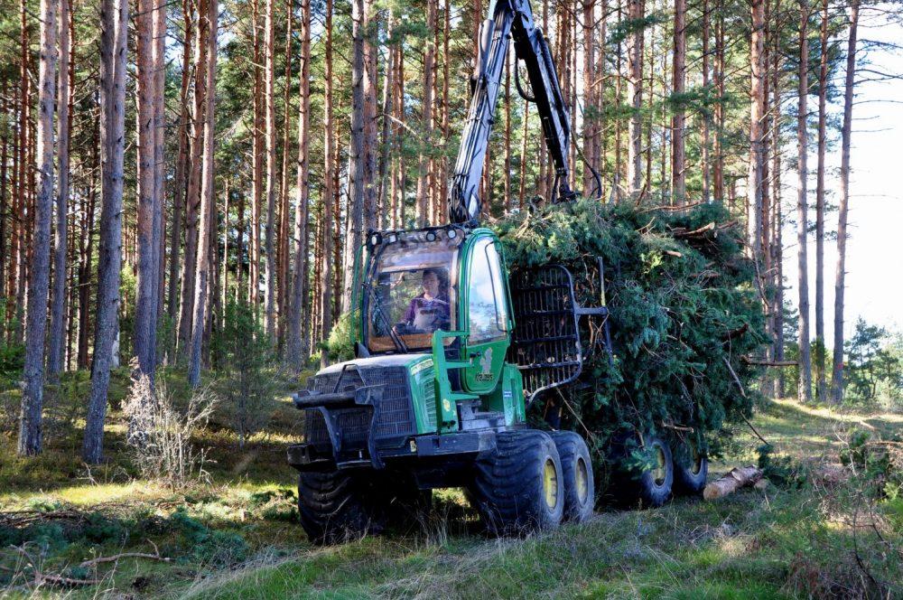mežstrāde meža īpašniekiem